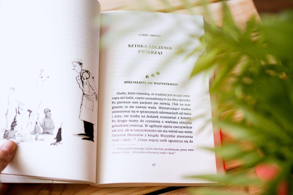 Rysunki wewnątrz książki