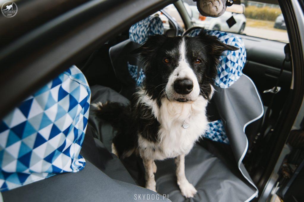 Szaman gotowy do drogi z matą samochodową BeBobi