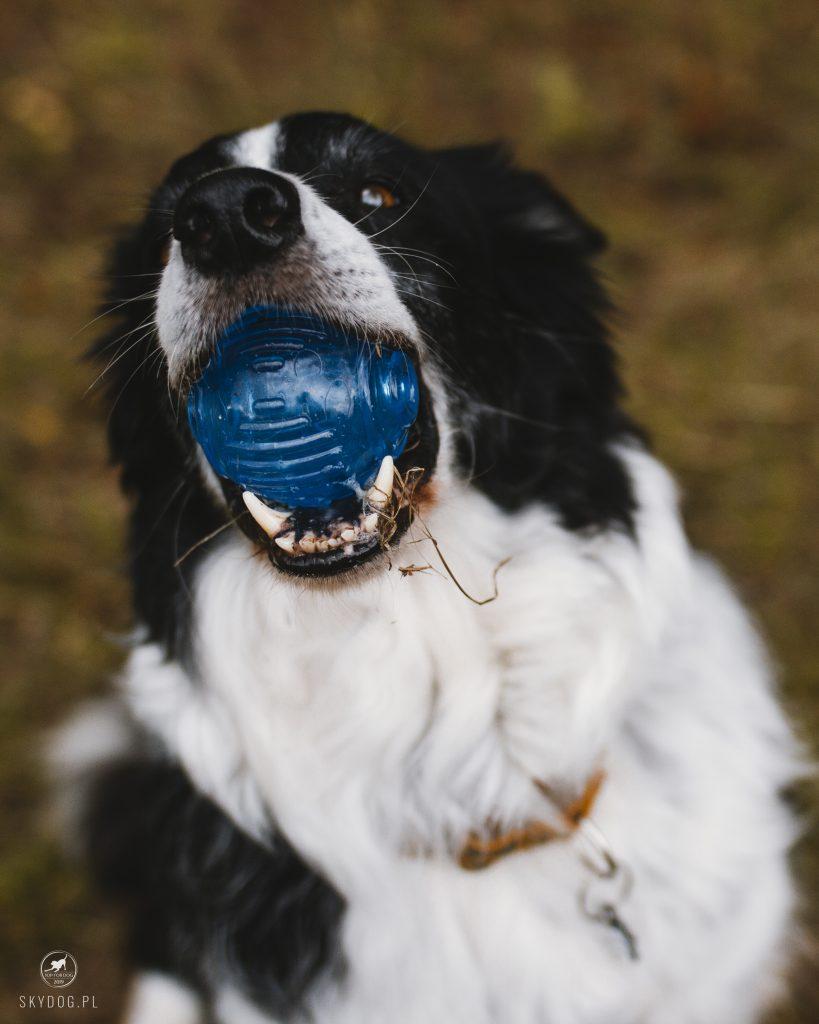 Piłka Orka Tennis Ball